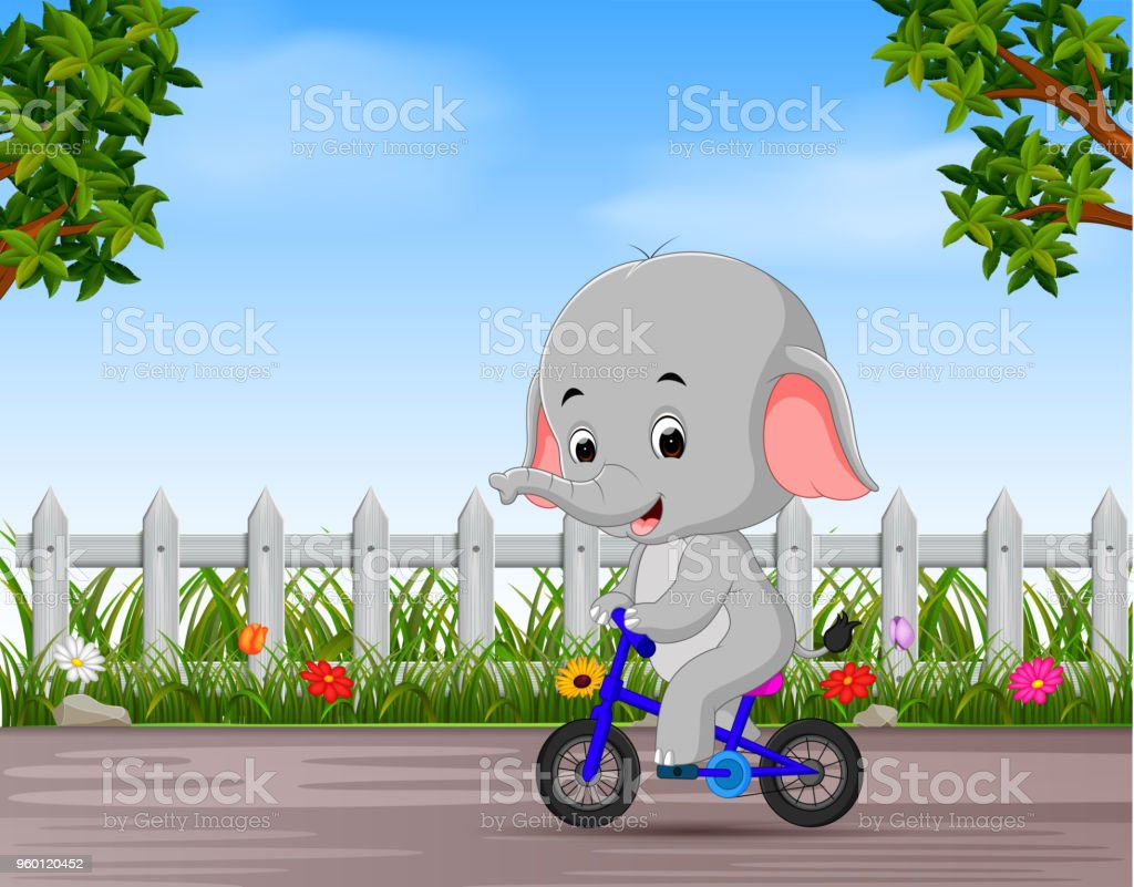 funny elephant cycling in the road vector art illustration