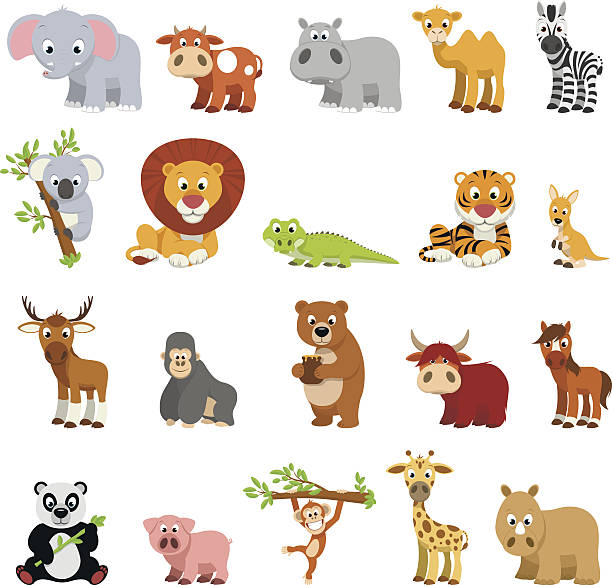 Funny exotic animals vector art illustration