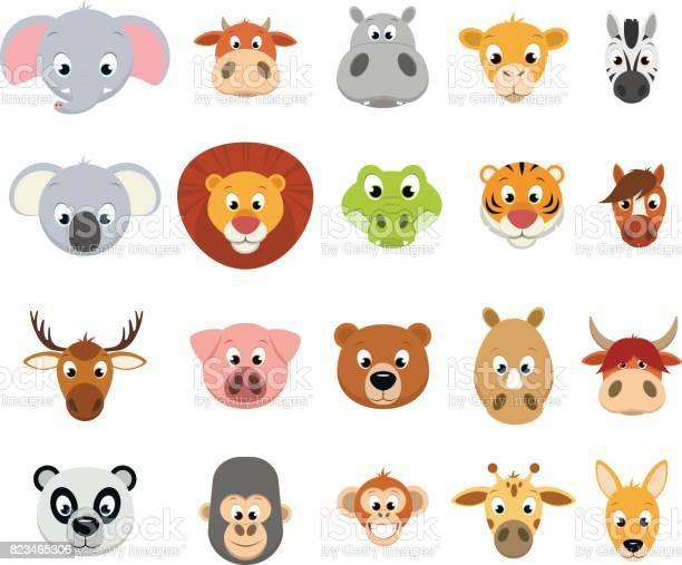 Funny exotic animals vector id823465306?b=1&k=6&m=823465306&s=612x612&h=x6 v itam pya9mskze lrna9qnddhfhkeevyegybio=