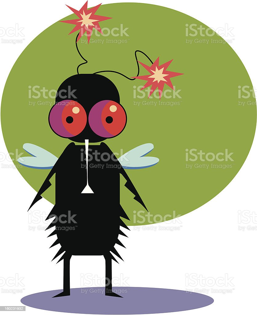 Funny fly royalty-free funny fly stock vector art & more images of animal