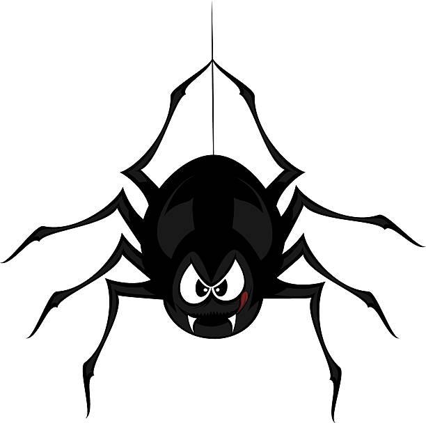 funny freaky spider - tarantula stock illustrations