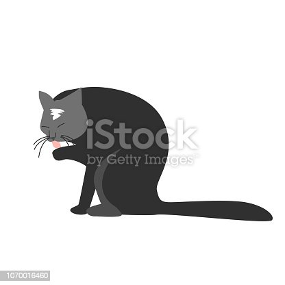 Funny hand drawn black cat is licking its paw. Vector illustration of a cartoon character. A wall sticker, decal or decoration.