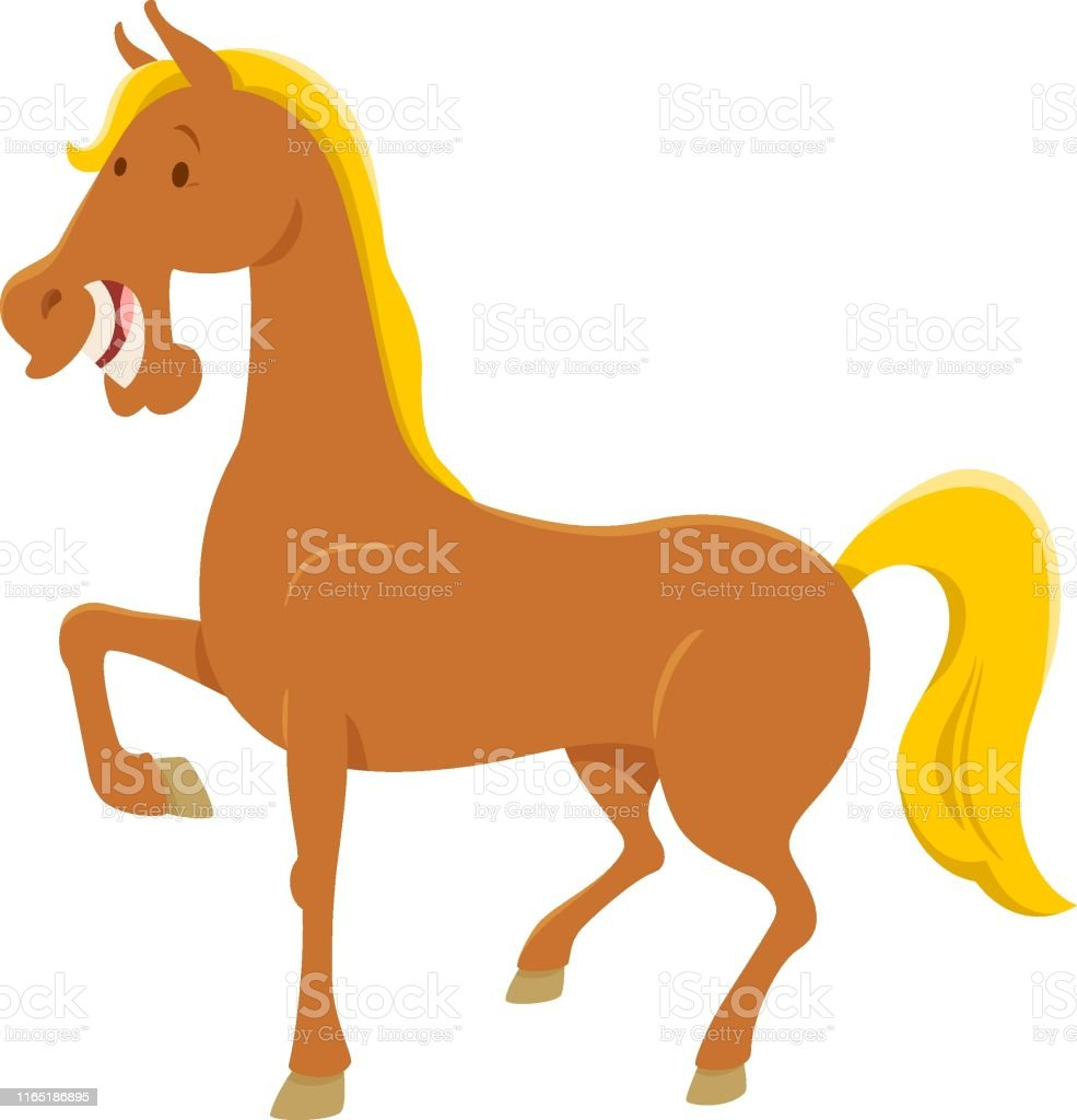 Funny Horse Character Cartoon Illustration Stock Illustration Download Image Now Istock