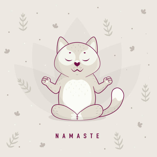 Funny illustration with cartoon cat sitting on lotus position of yoga. – artystyczna grafika wektorowa