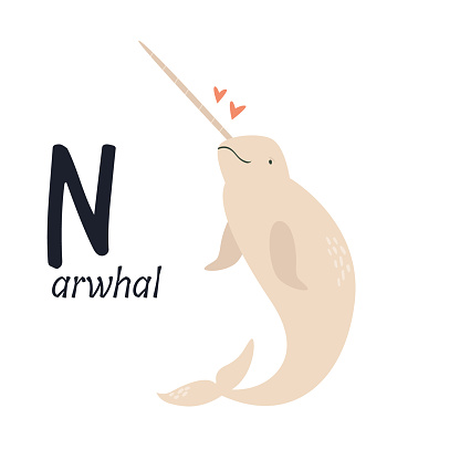 Funny image of narwhal and letter N. Zoo alphabet collection.