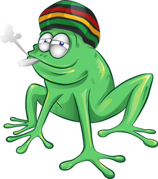funny jamaican frog cartoon funny jamaican frog cartoon  isolated on white background rastafarian stock illustrations