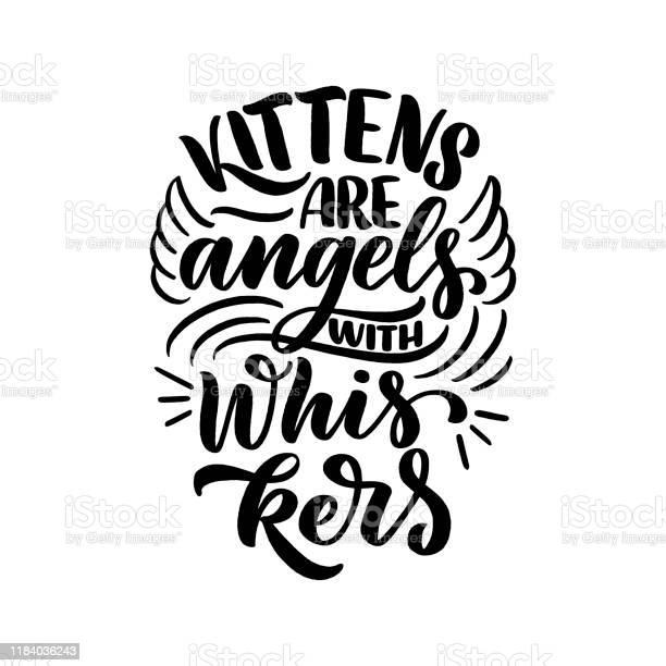 Funny lettering quote about cats for print in hand drawn style vector id1184036243?b=1&k=6&m=1184036243&s=612x612&h= ira5fqptfbkr bnrnduahri1slccmu992reya1u77y=