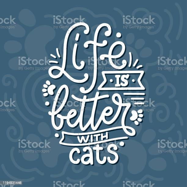 Funny lettering quote about cats for print in hand drawn style vector id1194531446?b=1&k=6&m=1194531446&s=612x612&h=gmdnsedqzpi tdpwuhsk0piqdj8rxoo9p7dwdidwb5a=