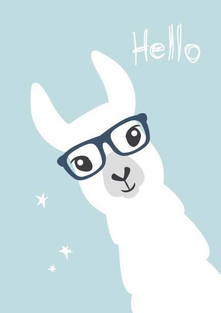 Best Smiling Llama Clip Art Illustrations Royalty Free