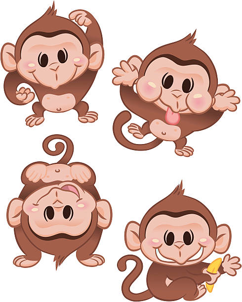Funny Monkeys Four funny monkeys (or maybe the same one 4 times): holding a banana, doing a hand stand, making a funny face, and just monkeying around! heyheydesigns stock illustrations