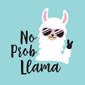 Funny white no prob llama wearing sunglasses.