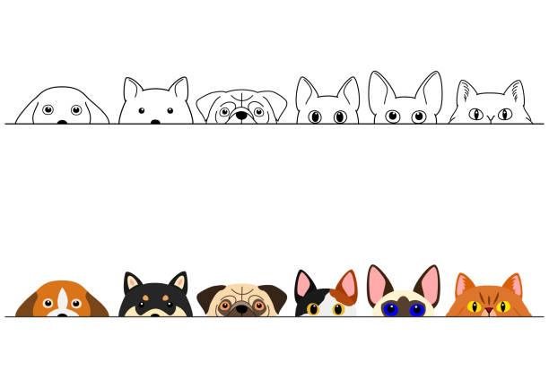 面白い覗く猫と犬のボーダーセット ベクターアートイラスト