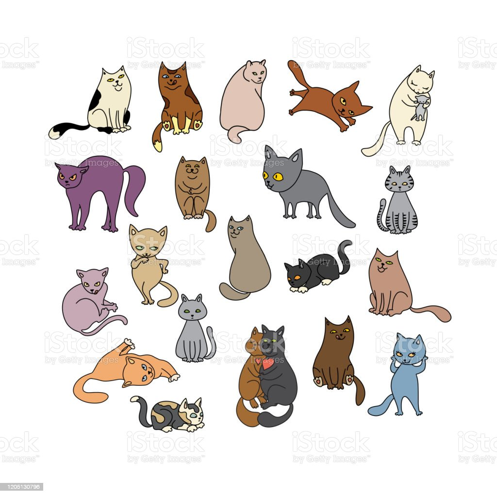 Hewan Peliharaan Lucu Dengan Latar Belakang Putih Set Kucing ...