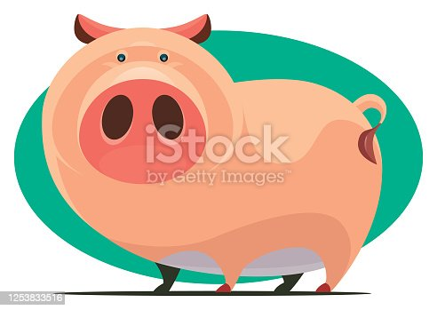 vector illustration of funny pig character