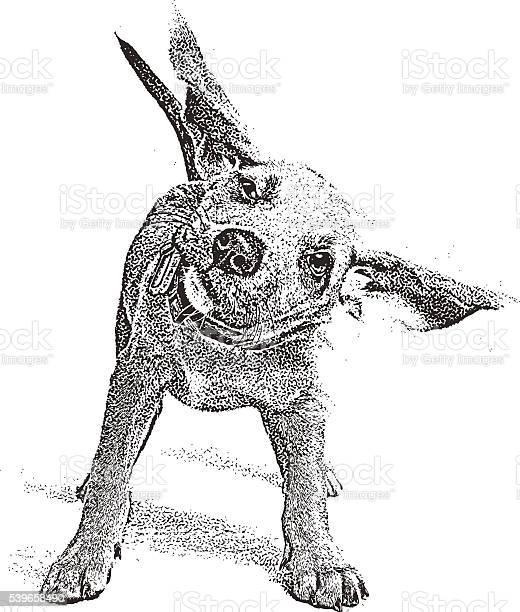 Funny puppy shaking his head vector id539658490?b=1&k=6&m=539658490&s=612x612&h=yhc8ej9haueht3xgtjsenlun27h306iiqz6jstwwtqk=