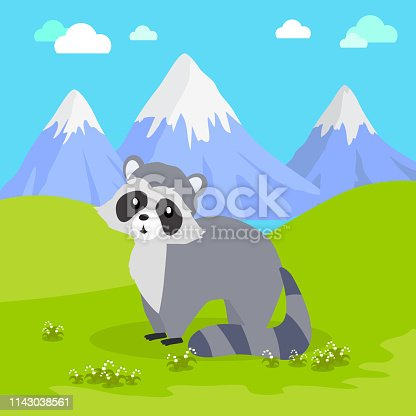 Funny raccoon sitting on green grass on background of mountain landscape. Gray raccoon with striped tail. Animal adorable mammal raccoon vector character. Natural background. Wildlife character
