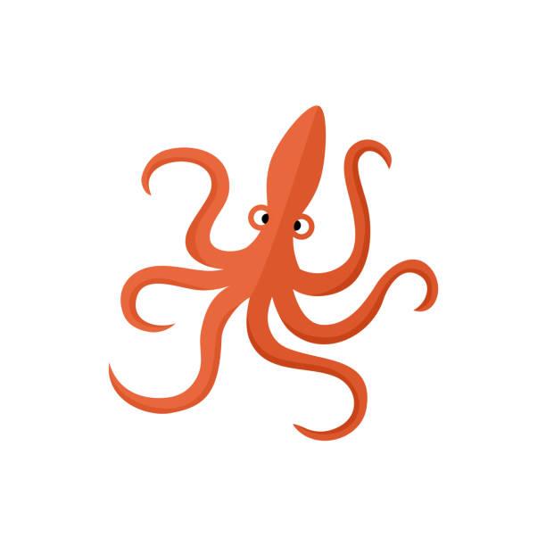 lustige rote krake flache cartoon-vektor-illustration - kalamar stock-grafiken, -clipart, -cartoons und -symbole