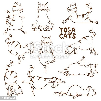 funny sketch cat doing yoga position stock vector art
