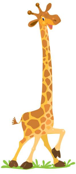 lustige giraffe lächelnd - giraffenhumor stock-grafiken, -clipart, -cartoons und -symbole