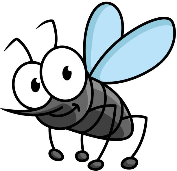 Funny smiling gray mosquito cartoon character Funny cartoon mosquito character with googly eyes and long curved proboscis isolated on white background fly insect stock illustrations