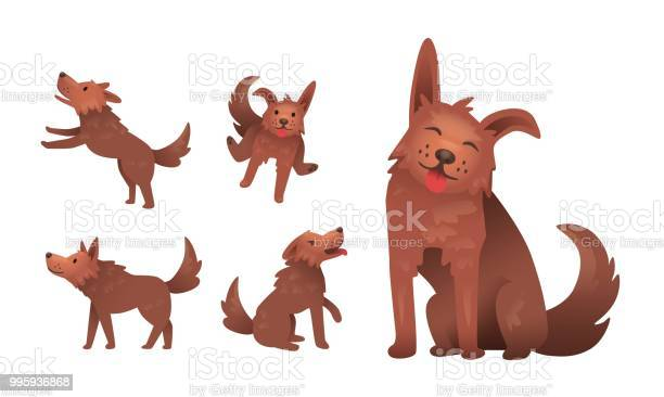 Funny smiling shaggy dog character playing set of gestures and poses vector id995936868?b=1&k=6&m=995936868&s=612x612&h=btp2m8jzwuqoawmdzzo5mmewb6aokeaflg8vd1f kh0=