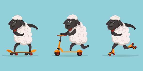 Funny sporty sheep.