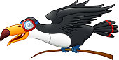 Illustration of Funny toucan cartoon character