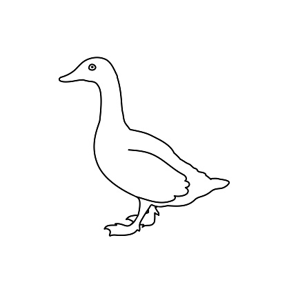 funny vector goose. line drawing illustration. black and white bird outline. simple icon. baby doodle. cartoon character.