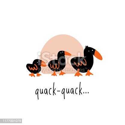 Funny vector illustration of three walking ducks. Phrase quack Quack
