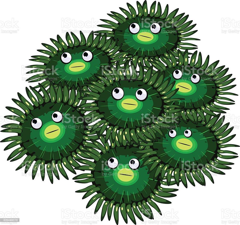 Funny Zoanthus vector art illustration