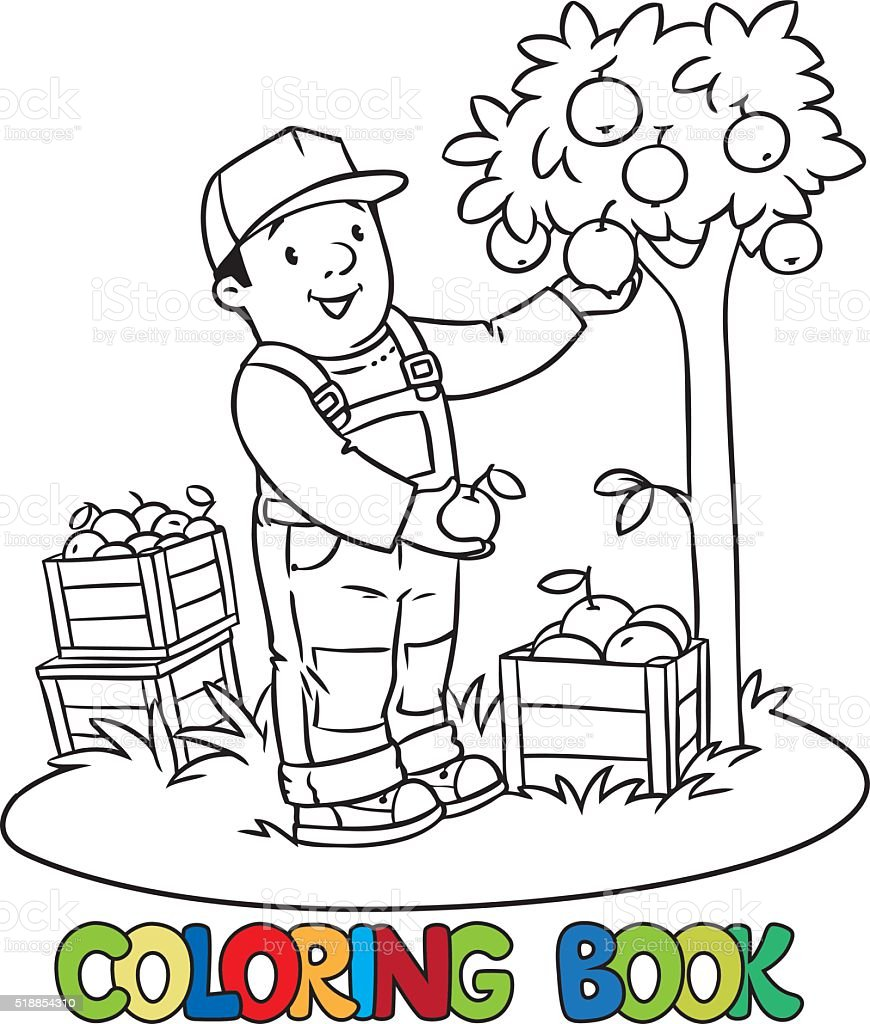Funy Farmer Or Gardener With Apples Coloring Book Royalty Free Stock Vector Art