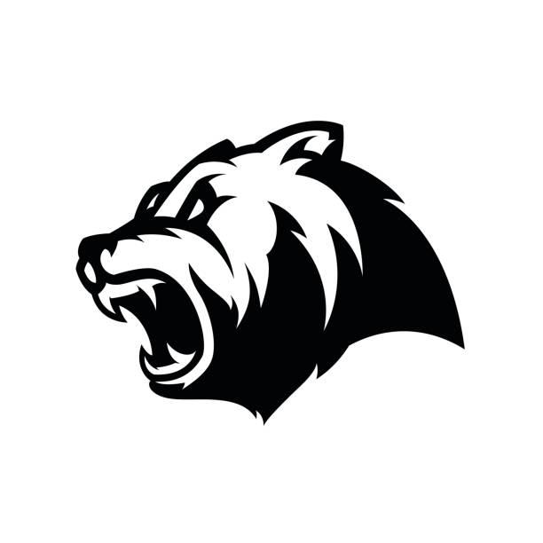 Furious bear head sport vector vector art illustration