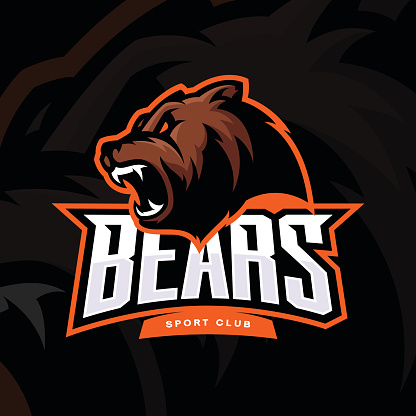 Furious bear sport vector