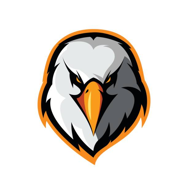 furious eagle head athletic club vector logo concept isolated on white background. - eagle character stock illustrations, clip art, cartoons, & icons