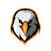 Furious eagle head athletic club vector logo concept isolated on white background.
