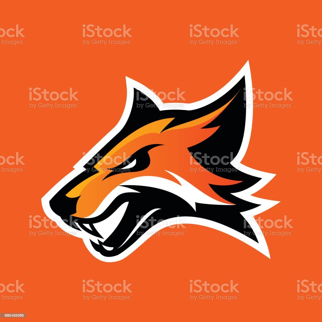 Furious fox sport club vector logo concept isolated on orange background. vector art illustration
