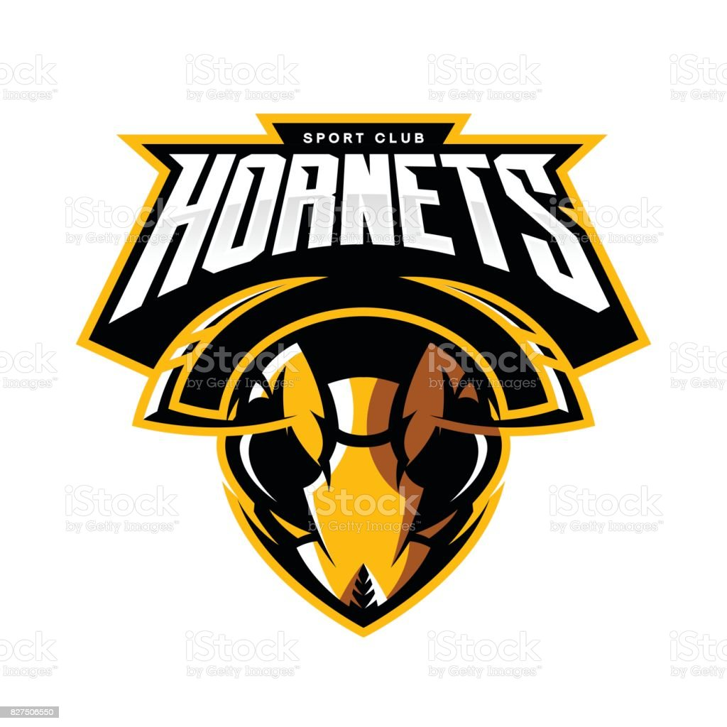 Furious hornet head athletic club vector icon concept isolated on white background. vector art illustration