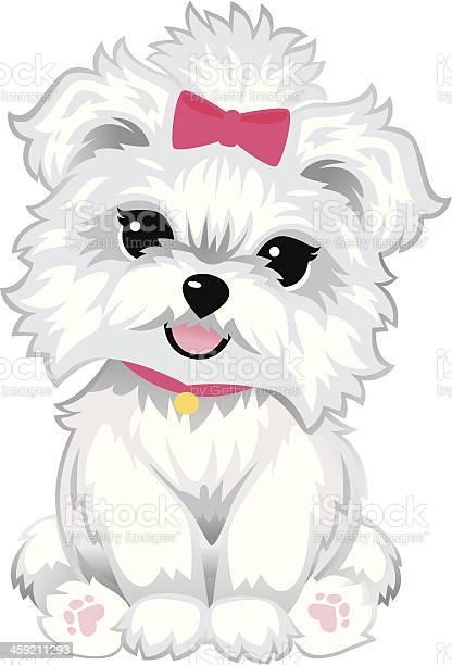 Furry white puppy vector id459211293?b=1&k=6&m=459211293&s=612x612&h=jqgmqjuikw8etdn9t uauvaobhbqaxta6wrxjok78a8=