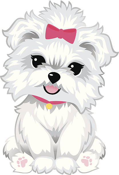 furry white puppy - heyheydesigns stock illustrations