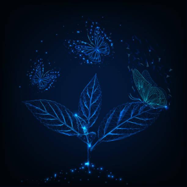 bildbanksillustrationer, clip art samt tecknat material och ikoner med futuristisk glödande låg poly flygande fjärilar runt gröna växt på mörkblå bakgrund. - summer sweden