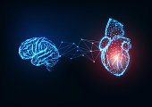 Futuristic glowing low polygonal connected human organs brain and heart on dark blue background.