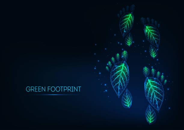 bildbanksillustrationer, clip art samt tecknat material och ikoner med futuristiska glödande låg månghörnigt gröna ekologiska fotavtryck gjorda av löv på mörkblå bakgrund. - swedish nature