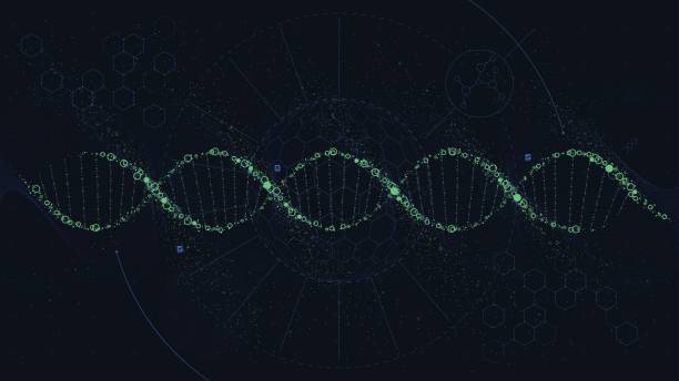 Futuristic illustration of the structure of DNA, Sci-Fi interface, vector background Futuristic illustration of the structure of DNA, Sci-Fi interface, vector background helix model stock illustrations
