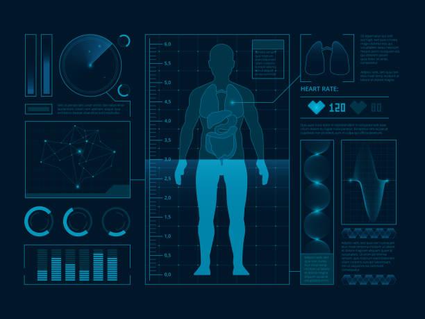 illustrations, cliparts, dessins animés et icônes de symboles médicaux futuristes de balayage pour l'interface web. visualisation de l'homme numérique vérifier. hud de vecteur - infographies médicales