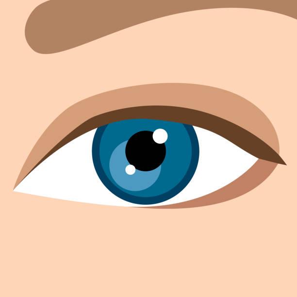 ilustraciones, imágenes clip art, dibujos animados e iconos de stock de öga - ojos azules