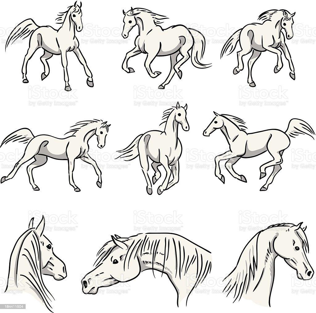 Galloping Arabian Horses vector art illustration