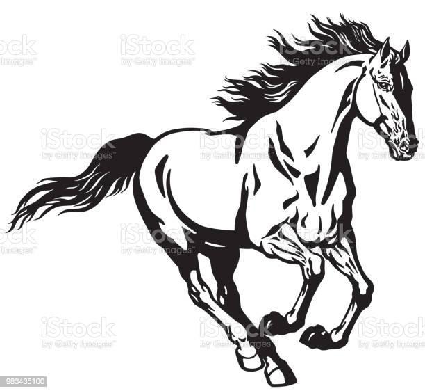 Galloping horse black and white vector id983435100?b=1&k=6&m=983435100&s=612x612&h=9itqzx1yfpjhskyltpmj9itbvaqrijc3bmeqav9hu u=