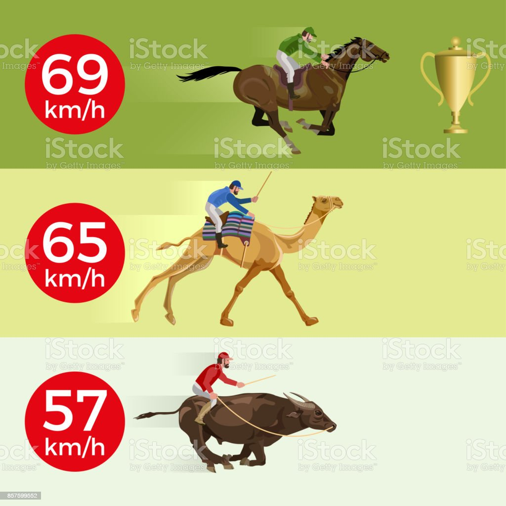 Galloping horse, camel, bull vector art illustration