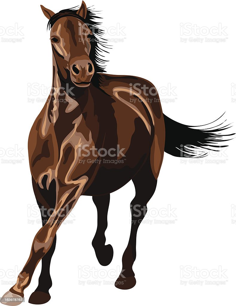 galloping horse in sunshine royalty-free stock vector art