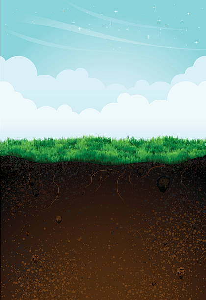 soil illustrations royalty  vector graphics clip